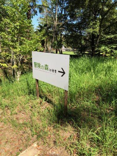 【子連れ名古屋周辺お出かけ】冒険の森 in せき