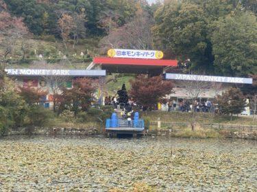 【子連れ名古屋周辺お出かけ】日本モンキーパークとおしりたんてい
